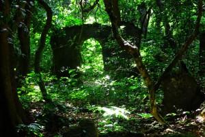 Portugisische Ruinen im Zauberwal bei Mtwapa